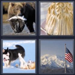 4 fotos 1 palabra oso con pescado