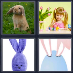 4-Fotos-1-palabra-conejo