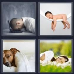 4 fotos 1 palabra cabeza encima computadora