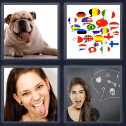4 fotos 1 palabra perro