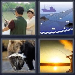 4 fotos 1 palabra oso con pescado en la boca