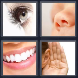 4 fotos 1 palabra ojo nariz boca oreja
