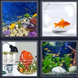 Soluciones-4-Fotos-1-palabra-acuario