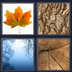 Soluciones-4-Fotos-1-palabra-arbol