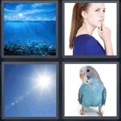 solucion de 4 fotos 1 palabra