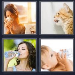 4 fotos 1 palabra mujer tomando algo y gato