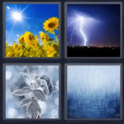 4 fotos 1 palabra girasoles rayo