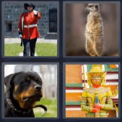 4 fotos 1 palabra soldado inglés