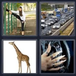 Soluciones-4-Fotos-1-palabra-largo
