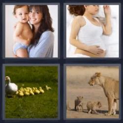 4 fotos 1 palabra leona