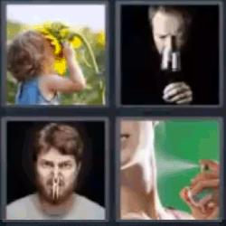 4 fotos 1 palabra niña con girasol