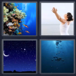 4 fotos 1 palabra coral estrellas