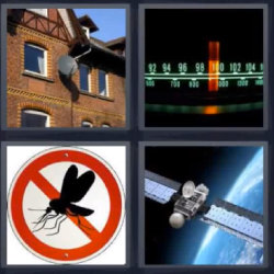 4 fotos 1 palabra mosquito satélite