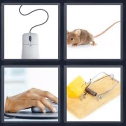 4 fotos 1 palabra rata