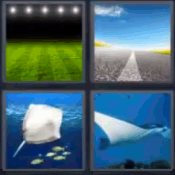 4 fotos 1 palabra campo de futbol