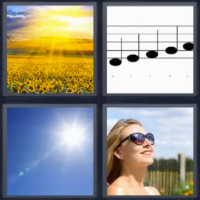 4 fotos 1 palabra girasoles