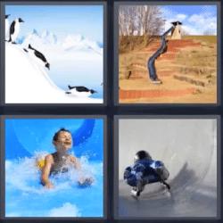 4 fotos 1 palabra pinguinos resbalando
