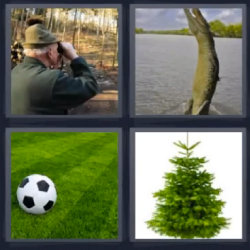 4 fotos 1 palabra cocodrilo