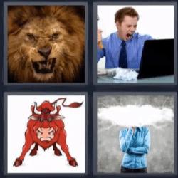 4 fotos 1 palabra león toro
