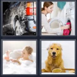 4 fotos 1 palabra perro, lavadora, niña en la bañera, carro
