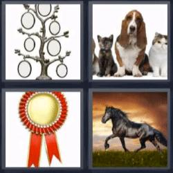 4 fotos 1 palabra caballo negro, perro y gatos, árbol genealógico, medalla