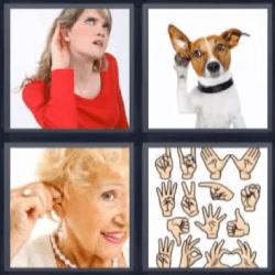 4 fotos 1 palabra perro, mujeres con mano en la oreja, manos