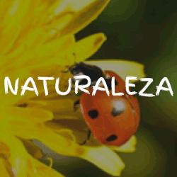 1-Palabra-4-Fotos-Naturaleza