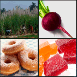 1-Palabra-4-Fotos-nivel-11.10-Azúcar
