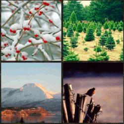 1 palabra 4 fotos montaña nevada