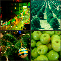 1-Palabra-4-Fotos-nivel-13.59-Verde