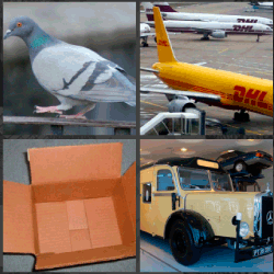 1 palabra 4 fotos avion dhl