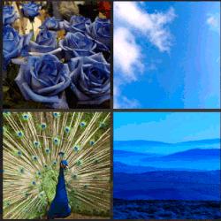 1-Palabra-4-Fotos-nivel-3.15-Azul