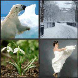 1-Palabra-4-Fotos-nivel-3.5-Blanco