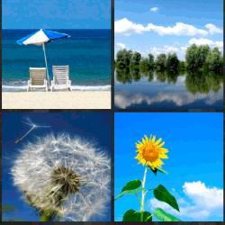 1 palabra 4 fotos girasol playa