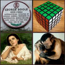1-Palabra-4-Fotos-nivel-9.48-Lógica