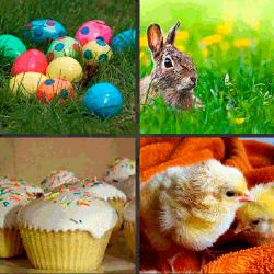 1 palabra 4 fotos pollitos conejo