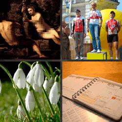 1 palabra 4 fotos flores blancas