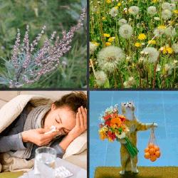 1-Palabra-4-Fotos-nivel-14.44-Alergia