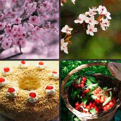 1 palabra 4 fotos pastel cerezas