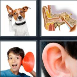 4 fotos 1 palabra oreja