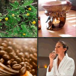 1-Palabra-4-Fotos-nivel-17.42-aroma