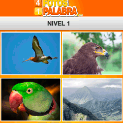 4-fotos-1-palabra-FB-nivel-1