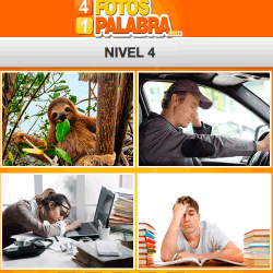 4 fotos 1 palabra facebook nivel 4