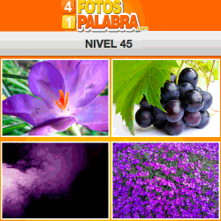 4-fotos-1-palabra-FB-nivel-45