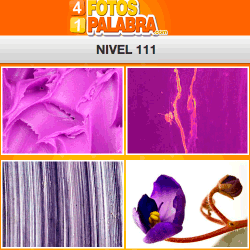 4-fotos-1-palabra-FB-nivel-111