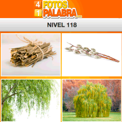 4-fotos-1-palabra-FB-nivel-118