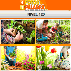 4-fotos-1-palabra-FB-nivel-120
