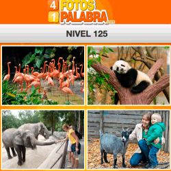 4-fotos-1-palabra-FB-nivel-125
