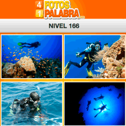 4-fotos-1-palabra-FB-nivel-166