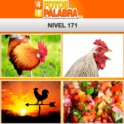 4-fotos-1-palabra-FB-nivel-171